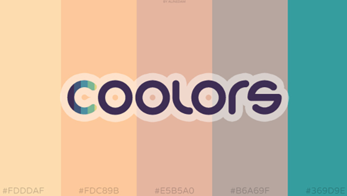 coolors-color-scheme-generator-photography.jpg